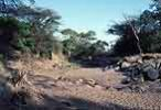 The Grumeti in the dry season - click to view detail